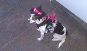 Witch Daisy