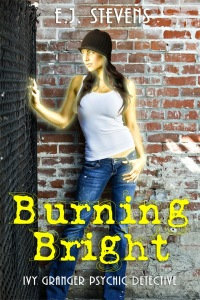 Review ~ Burning Bright by E.J. Stevens