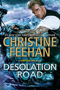 Review ~ Desolation Road by Christine Feehan